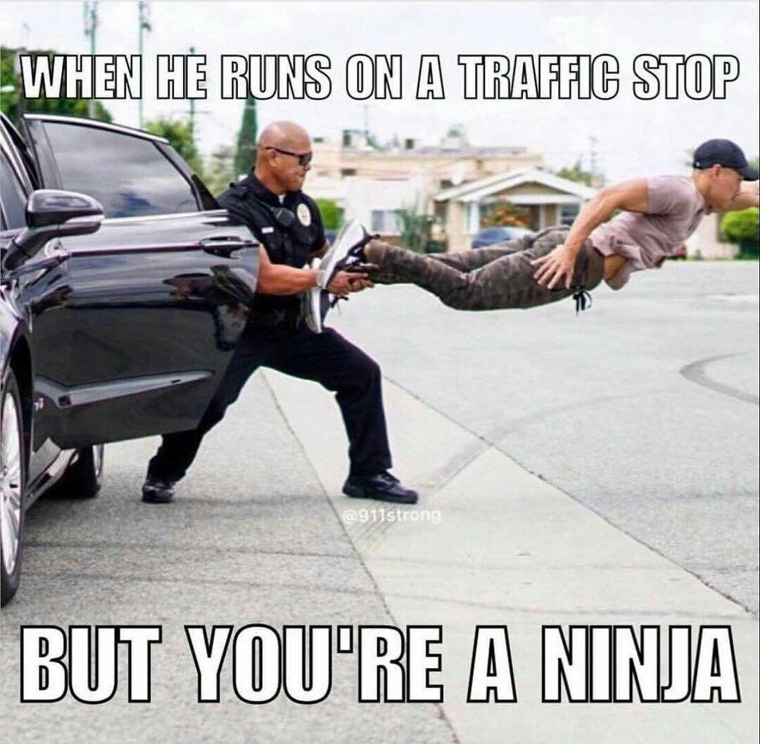 NinjaPolice.jpg