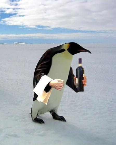 PenguinButler.jpg