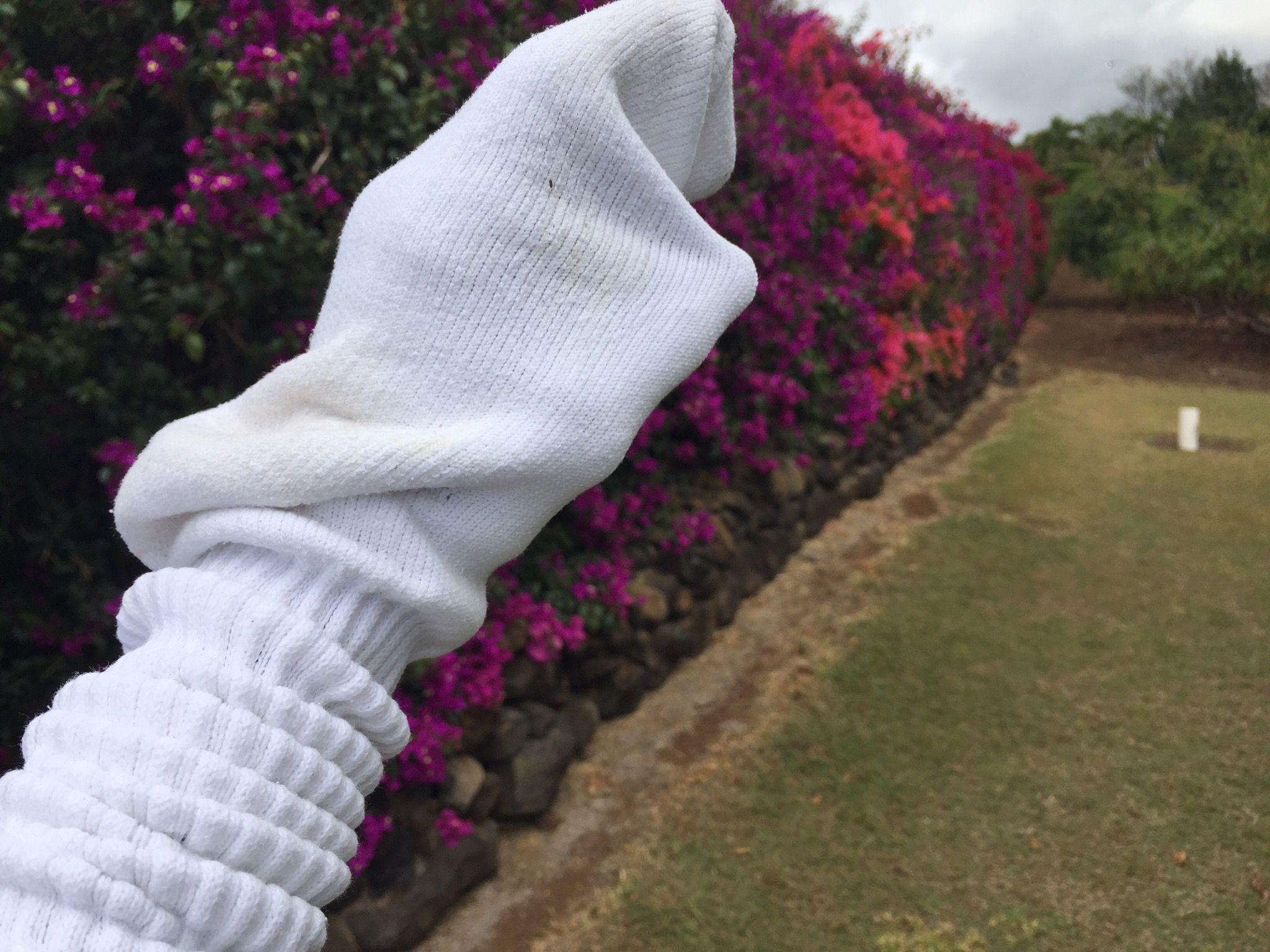 SockPuppet.jpg
